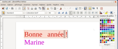 capture-bonne-annee-marine